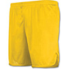 325 - Adult Longer Length Wicking Track Shorts